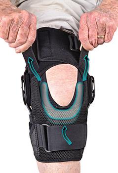 Global Knee